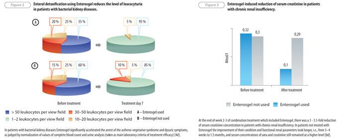 Enterosgel application in nephrology and urology